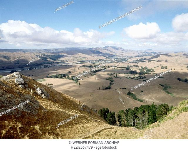Landscape near Napier. Country of Origin: New Zealand. Place of Origin: North Island. Credit Line: Werner Forman Archive/ . Location: 13