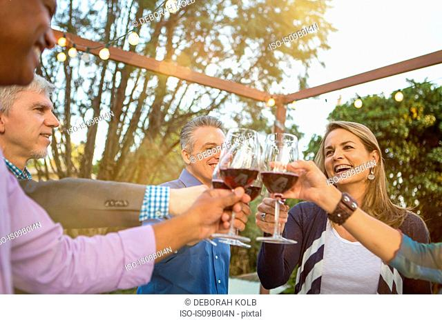 Mature friends in a circle making a red wine toast at garden party