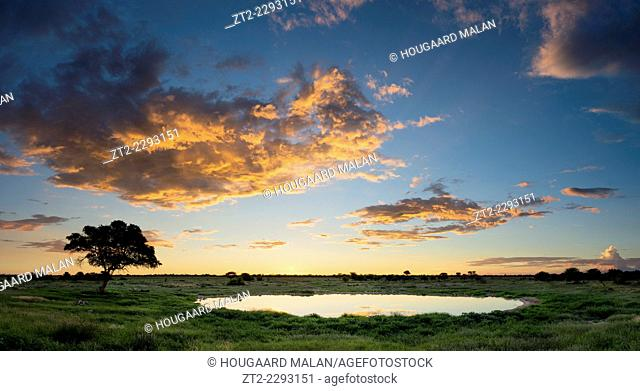 Wide angle view of a colourful summer sunset at the Okakuejo waterhole in Etosha. Etosha National Park, Namibia