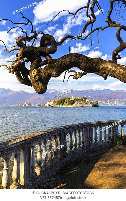 Isola Bella from the lakefront of Stresa, Lake Maggiore, Piedmont, Italy. Europe