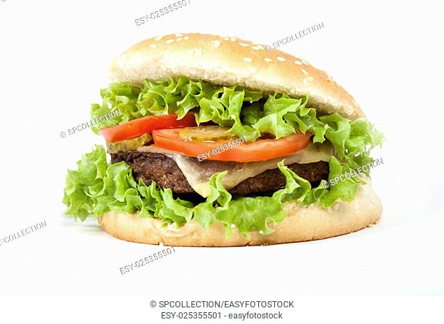 Isolated vegetarian Burger