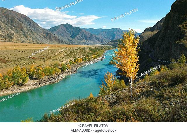 The Katun river s valley in autumn Altai Russia