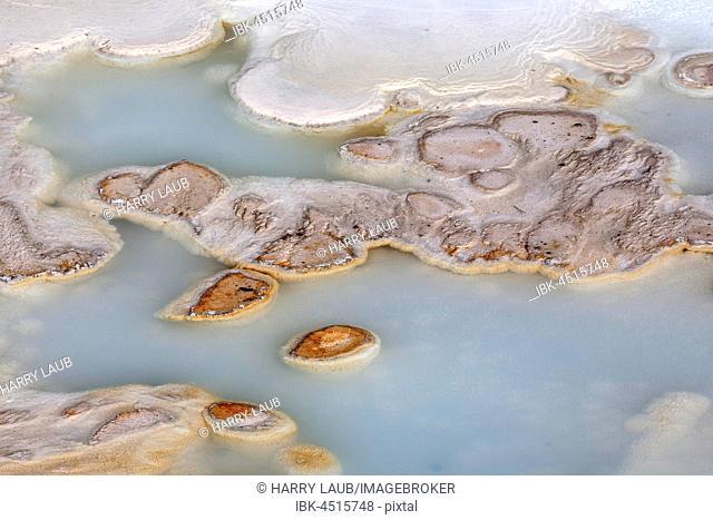 Mineral deposits in Porcelain Basin, Noris Geyser Basin, Yellowstone National Park, Wyoming, USA