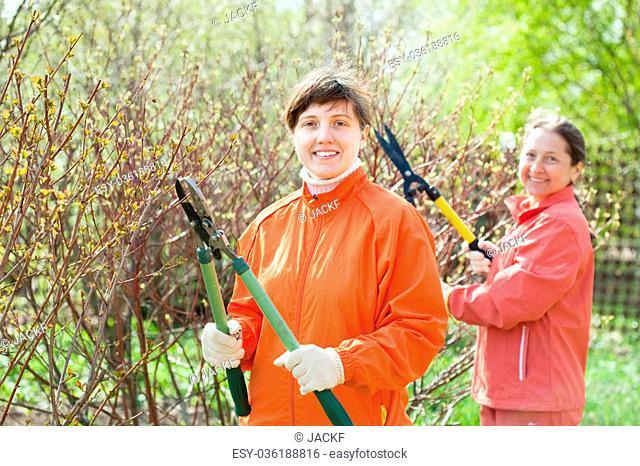 Two women cutting shrubbery at garden