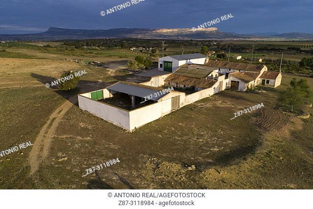 Paraje de Sugel and Sierra del Mugrón. Almansa. Albacete. Spain