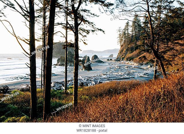 Ruby Beach at dusk in Olympic National Park, Washington USA