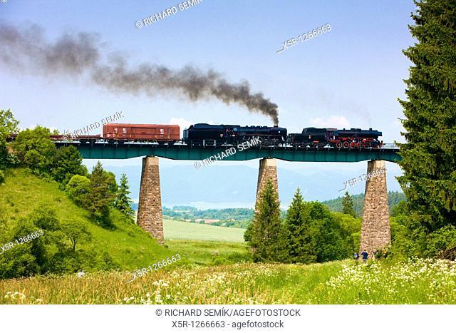 train with steam locomotives 556 036 near Horna Stubna, Slovakia