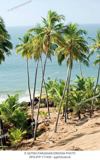 Khavne beach at sindhudurg , Maharashtra , India
