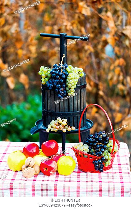 Grape juice squeezer on a rustic table decorated with autumn fruits