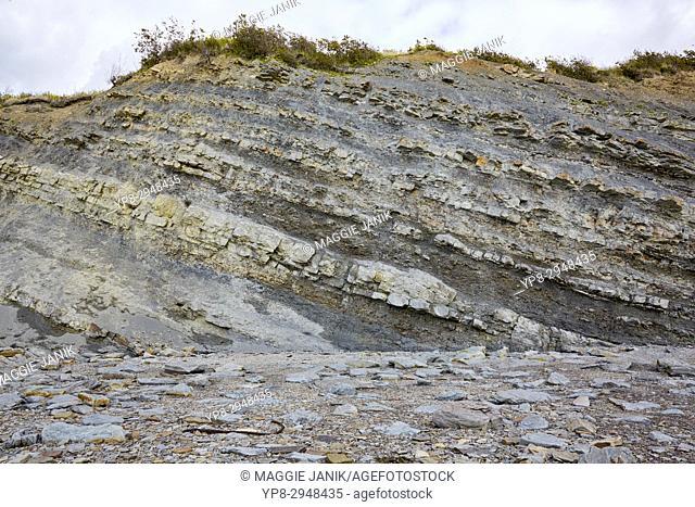 Sedimentary layering at Joggins Fossil Cliffs, Nova Scotia, Canada