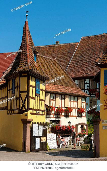 France, Haut Rhin (68), Eguisheim village (elected most beautiful french village), old domaniale court Unterlinden, winery