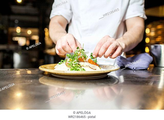 Midsection of chef garnishing food in plate at counter