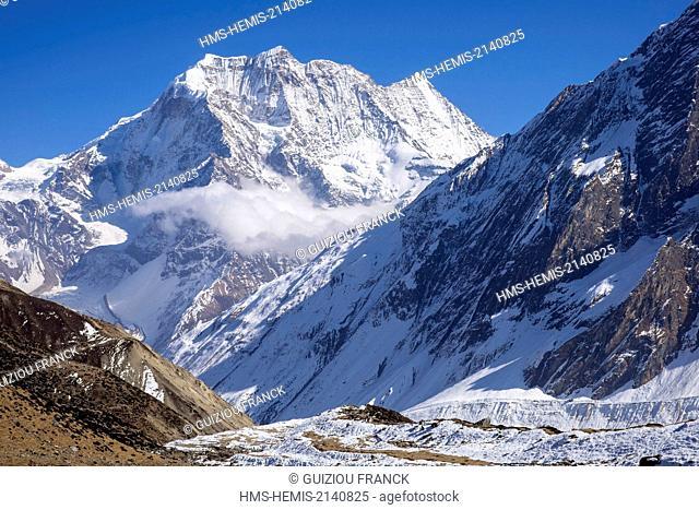 Nepal, Gandaki zone, Manaslu Circuit, between Samdo and Dharamsala, Samdo Peak (alt.6335m) from Dharamsala campsite (alt.4460m)