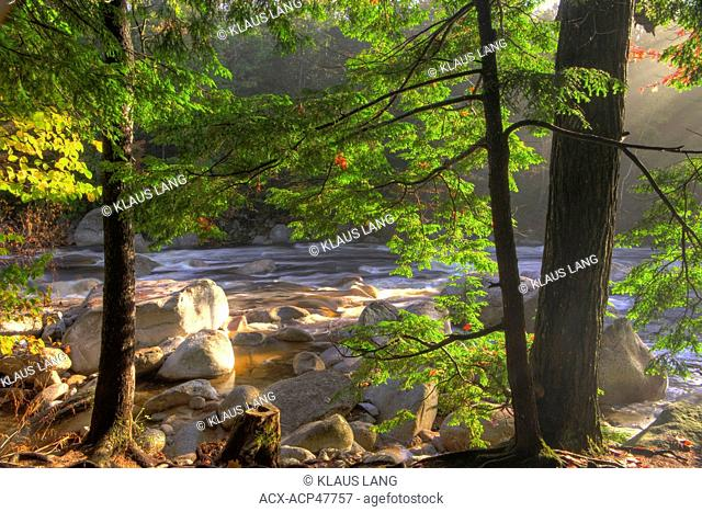 Rapids, Swift River, along Kancamagus Highway, White Mountains, New Hampshire, United States of America