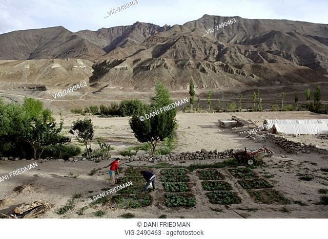 Ladakhi youth water an organic vegtable garden at the SECMOL Campus in Ladakh, India. The SECMOL Campus is located near the village of Phey in the Indus valley...