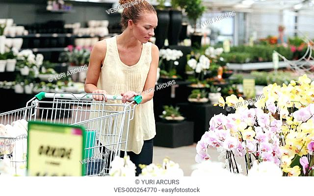 Attractive woman choosing and putting an orchid plant into her trolley to purchace