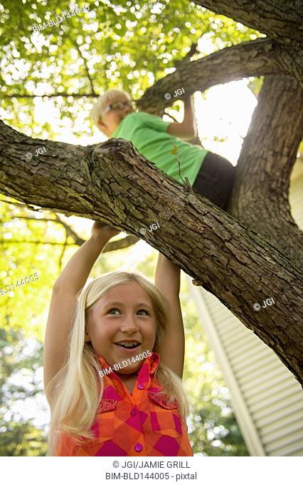 Low angle view of Caucasian children climbing tree