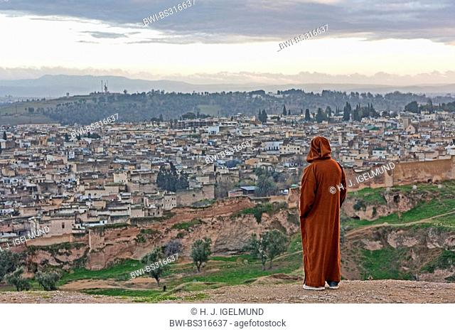 View from the fortress Borj Sud of the old city of F?s, Morocco, Fes