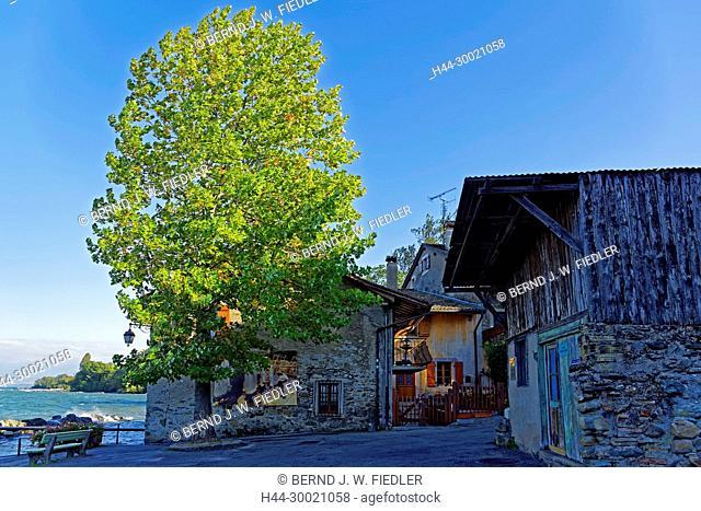 Alt, Hafen, Port de Pecheurs, Genfer See