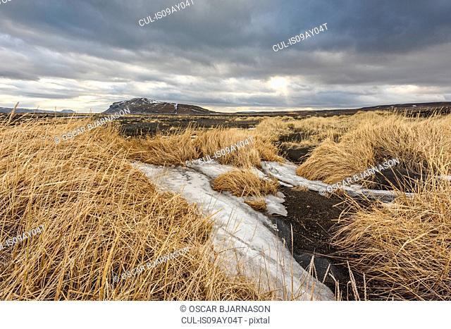 Landscape view, Arskogar, Iceland