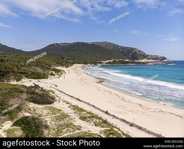 barriers to dune containment, Cala Agulla, Natural area of special interest, municipality of Capdepera, Mallorca, Balearic Islands, Spain