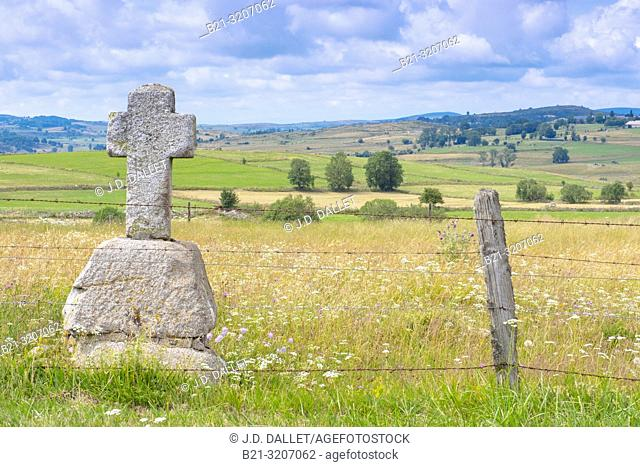 France, Occitanie, Lozére, Aubrac area by Nasbinals- Pilgrimage way to Santiago de Compostela
