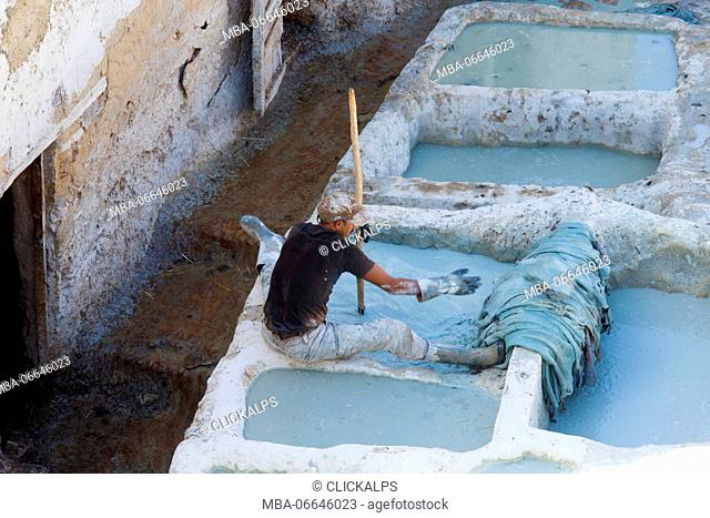 North Africa, Morocco, Fes district, Fez Tannery, Chouara Tannery. Leather processing