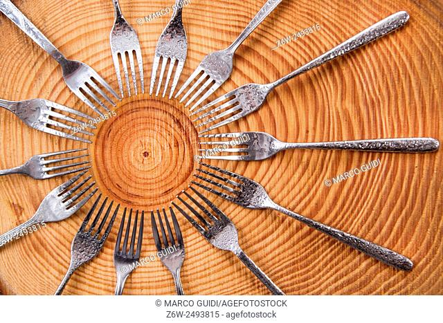 Series of different forks in a circle of pine board