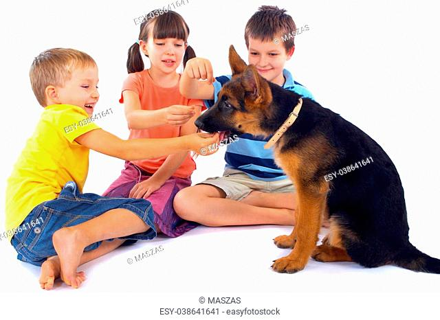 Three kids sit on the floor, laughing and smiling as they play with a cute german shepard puppy