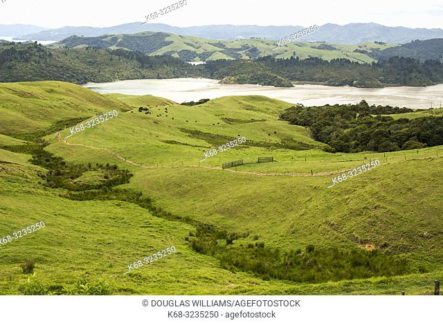 Landscape of the Coromandel penisnsula, north island, New Zealand