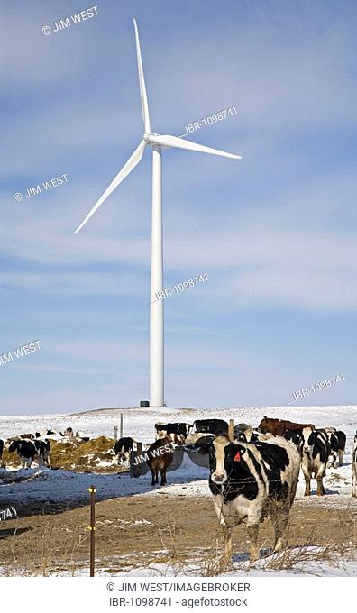 The Noble Thumb Windpark, owned by John Deere Wind Energy, Ubly, Michigan, USA