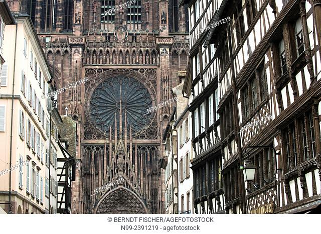 Strasbourg, frame houses in front of gothic cathedral, Alsace, France
