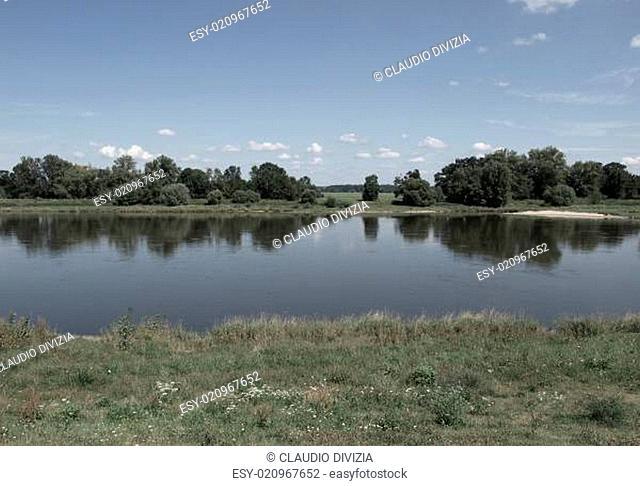 Elbe River Dessau