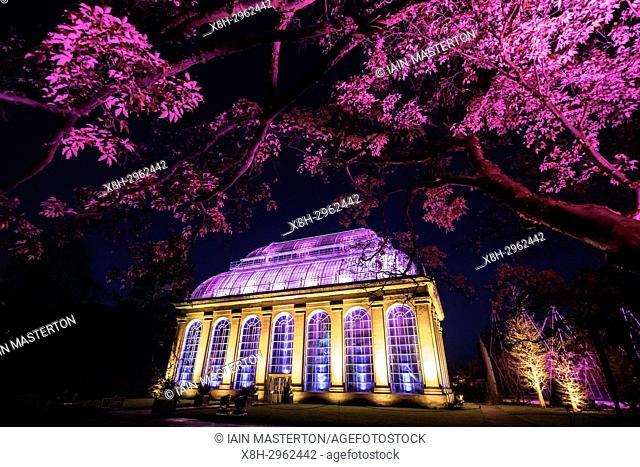 Edinburgh, Scotland, United Kingdom. 24 November, 2017. Edinburgh's newest festive event, Christmas at the Botanics, opened this evening