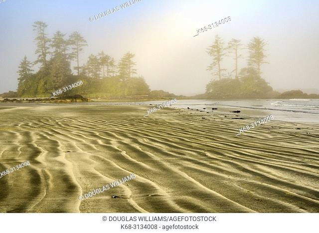 Beach on Flores Island, off the west coast of Vancouver Island, British Columbia, Canada