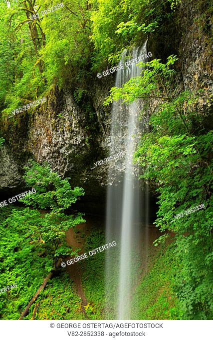 Shellburg Falls along Shellburg Falls Trail, Santiam State Forest, Oregon