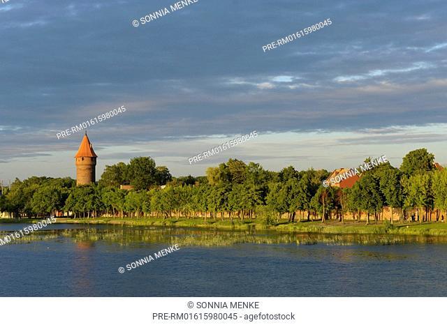 View over Nogat river, Malbork, Pomerania, Poland / Blick über den Nogat, Malbork, Pommern, Polen