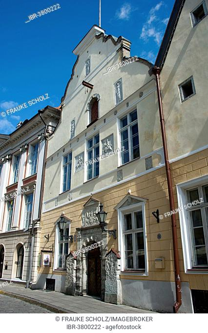 House of Blackheads, Pikk, historic centre, Tallinn, Estonia, Baltic States
