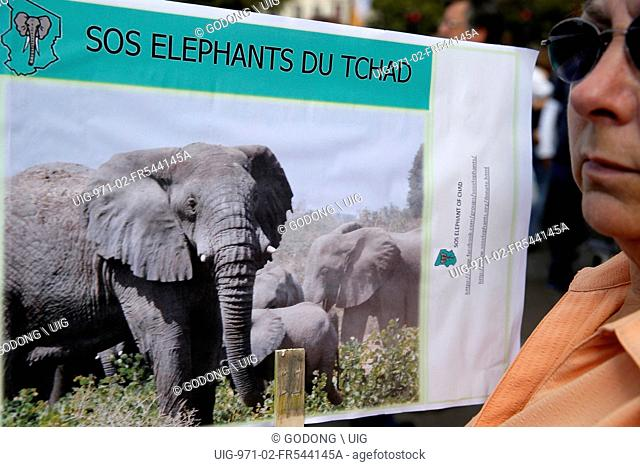 Global march for elephant and rhinos. World animal day
