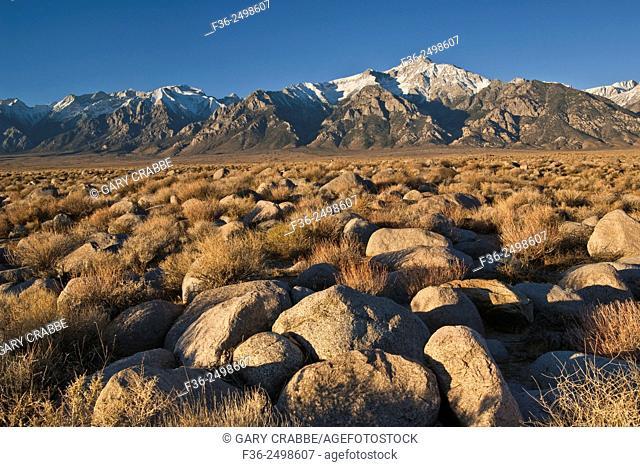 Rock field below the mountains of the Eastern Sierra, near Manzanar, California