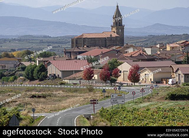 viña otoñal, Laguardia , sierra de Toloño, Alava, País Vasco, Spain