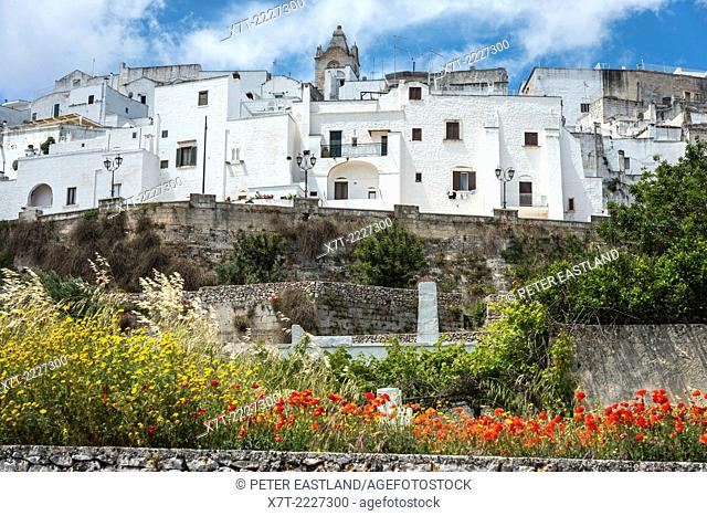Looking up at the old whitewashed town of Ostuni in Puglia, Southern Italy