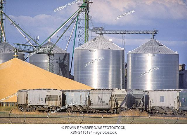 Idaho, USA - Grain elevator, grain, and rail cars