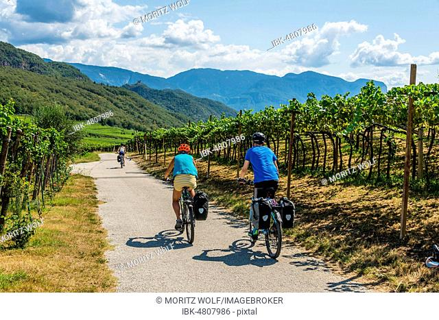 Two cyclists with mountain bike, on the Via Claudia Augusta cycle path, crossing the Alps, between vineyards, vineyards, Lake Caldaro, Caldaro, Trentino
