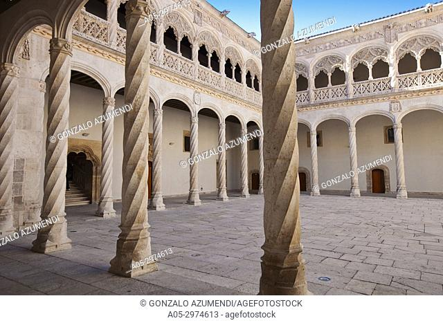 Central Courtyard. Sculpture National Museum Valladolid. Valladolid. Castilla Leon. Spain.