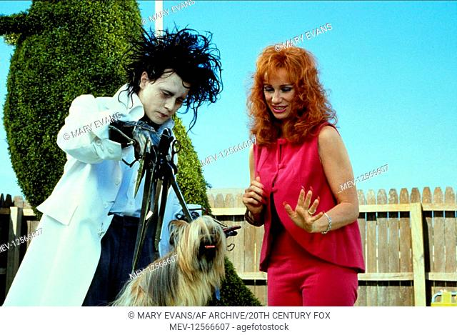 Johnny Depp Kathy Baker Characters Edward Scissorhands Joyce Film Edward Scissorhands Usa Stock Photo Picture And Rights Managed Image Pic Mev 12566607 Agefotostock