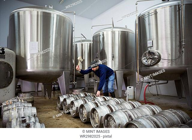 Man standing next to a row of metal beer kegs, filling them with beer from the fermentation tanks