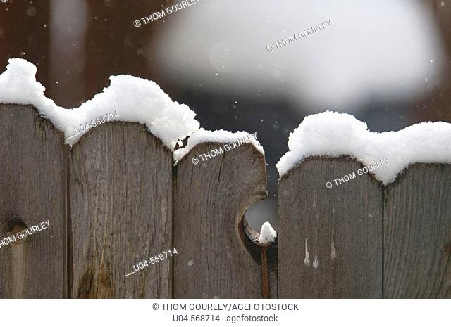 Early winter snow gathers atop wooden fence. Wasatch Mountains, Utah