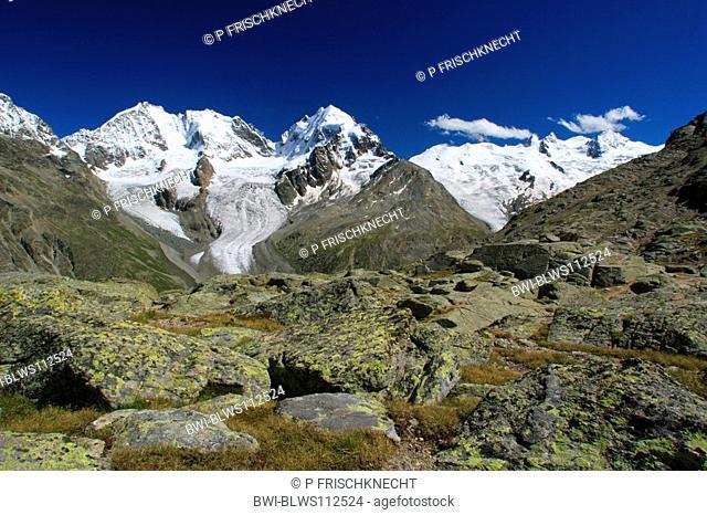 Piz Bernina, 4049 m, Biancograt, Piz Roseg, 3937 m, view from Fuorcla Sulej, 2755 m, Switzerland, Oberengadin