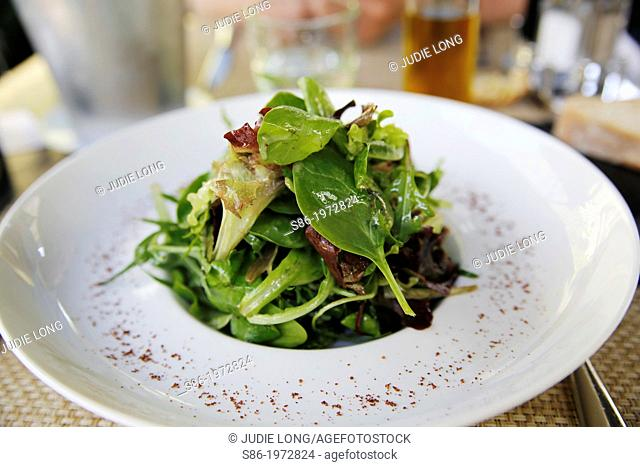 Green Salad Beautifully Presented on a White China Plate, in an Elegant Restaurant